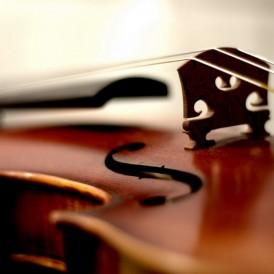 Geige_Luca Kotzian