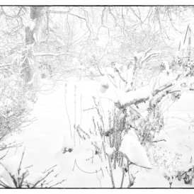 """""""Wintergarten""""- , von Rudolf Müller Fuji-XE 1 - 1/105s - f/4 - ISO 200 - 55mm"""