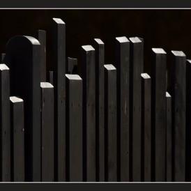 """""""Zaun""""- , von Werner Waldrich Nikon D 5300 - 1/1000s - f/10 - ISO 200 - 200 / 450mm"""