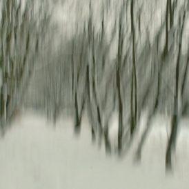 """""""Winterwald""""- , von Volker Siesenop Fujifilm XT2 - 0,15s - f/22 - ISO 10 - 27mm"""